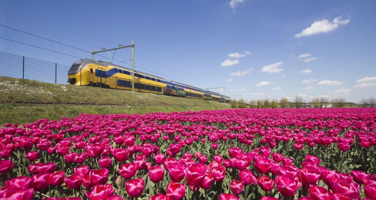 Neste år bare vindkraftdrevne tog i Nederland