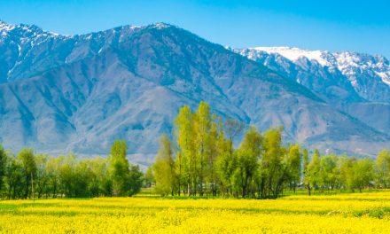 Konflikten i Jammu og Kashmir må løses internasjonalt