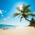 Sluker den kinesiske dragen Barbados?